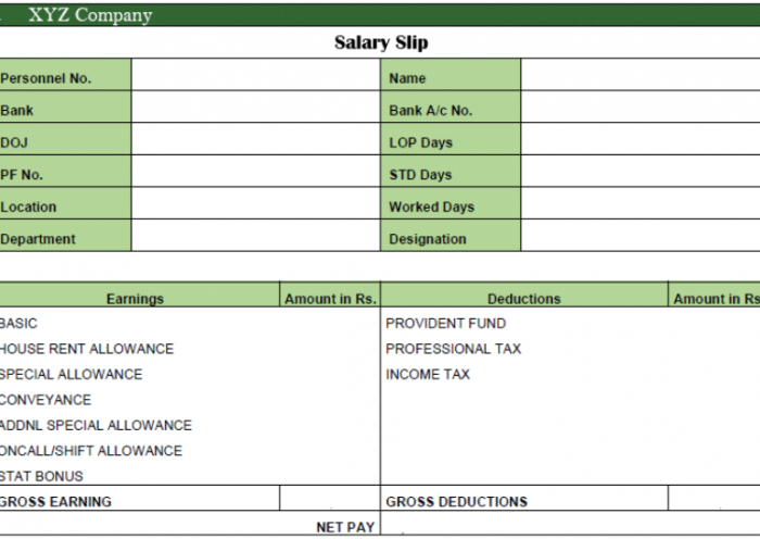 Salary Slip Pay Slip